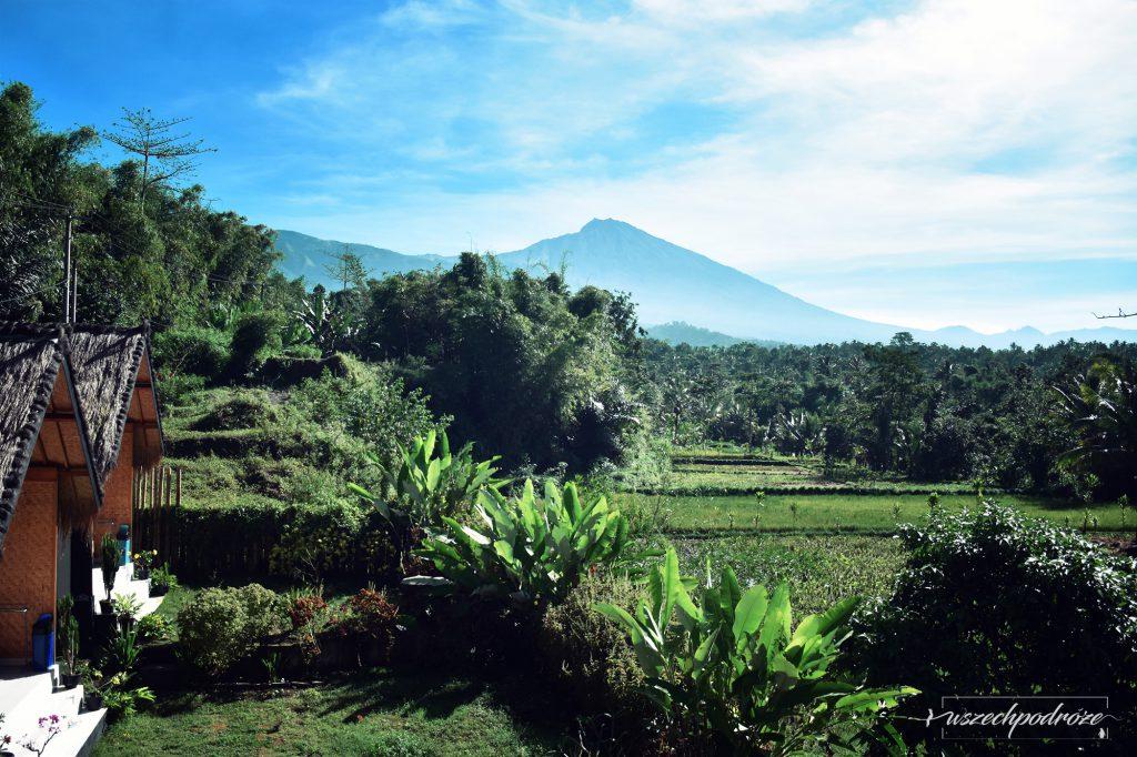 tani nocleg na lombok 5