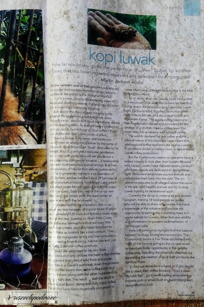 Prawda o Kopi Luwak